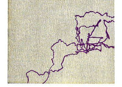 Lyon III